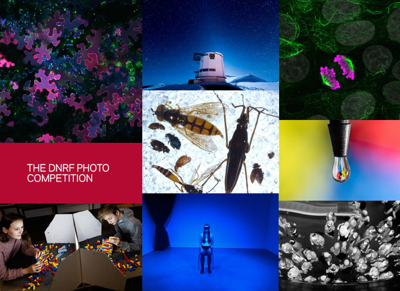 The image shows a collection of research photos from the DNRF's Photo Competition 2020