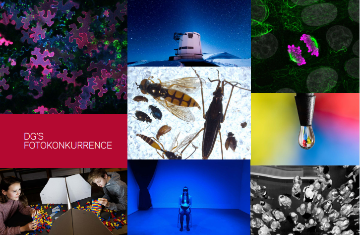 Collage af billeder fra fondens fotokonkurrence 2020