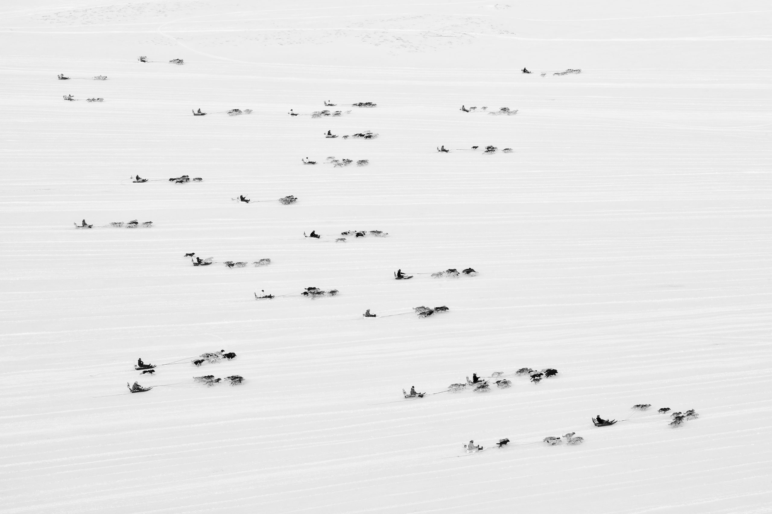 The image was shot in Ilulissat, Greenland in March 2018 during the annual national sled dog race.