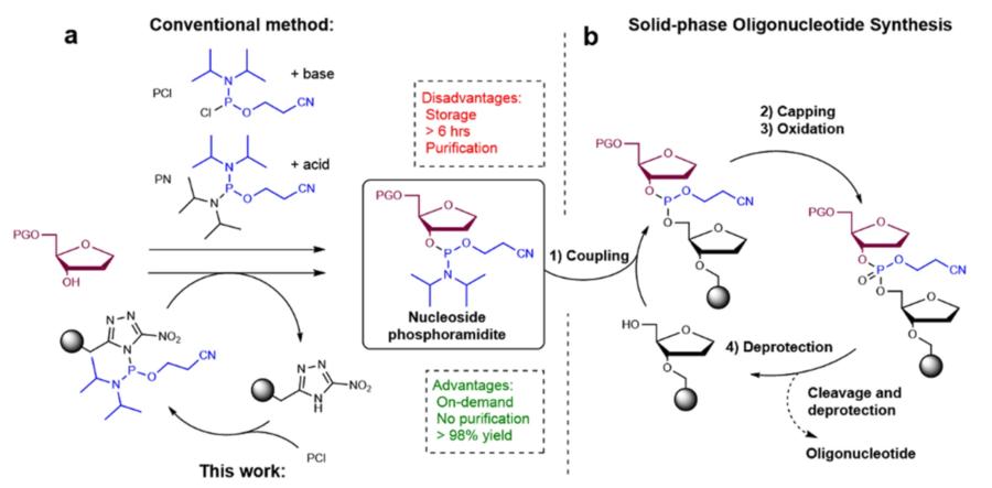 Illustration af strategien for skabelsen af phosphoramidites.